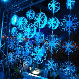 Snowflake Ice Curtain
