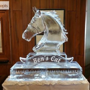 "Ben's Cat Statue Ice Sculpture Display - 60"" x 60"", 5 Blocks"