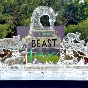 Elmwood Park Zoo Live Ice Carving Exhibition