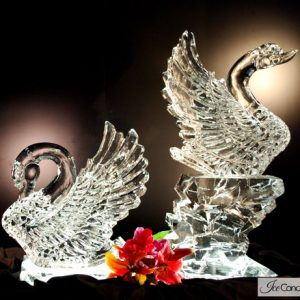"Swan Display Ice Carving - 40"" x 40"", 2 Blocks"
