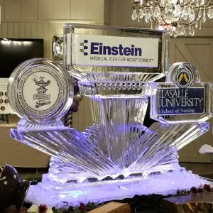 "Tornetta School Einstein Lasalle Display Ice Sculpture - 45"" x 65"", 4 Blocks"