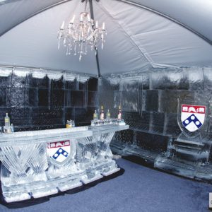 UPenn Ice Room